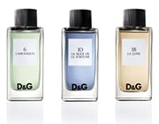 DG Fragrance Anthology