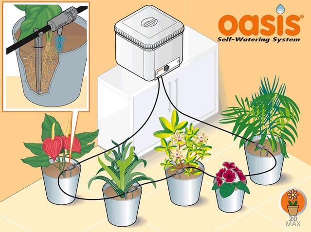 Claber oasis l 39 irrigazione senza pensieri quando siete in for Impianto irrigazione vasi