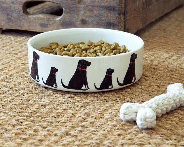 Zooplus negozio online con oltre articoli per for Articoli per cani
