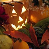 Scopri la vetrina di Halloween. Festeggia alla grande!